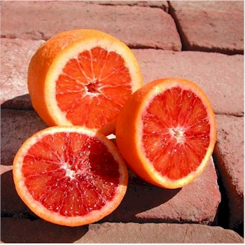 blood-oranges-350