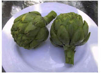 artichoke on plate