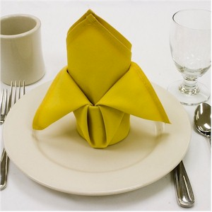 popes cap cloth napkin