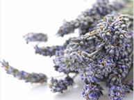 Cooking With Culinary Lavender