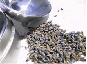 culinary lavender with bowl