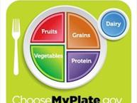 My Plate - New USDA Guidelines