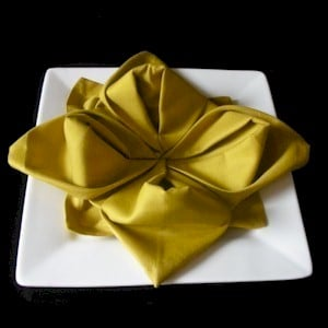 rose folded napkin
