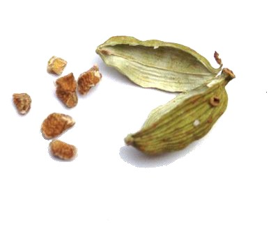 cardamon seeds with open pod