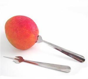 mango fruit with mango