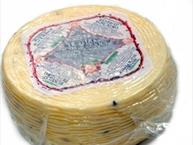 pepato romano cheese