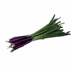 red spring onions