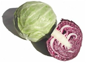 Cabbage Green Substitutes Ingredients Equivalents Gourmetsleuth