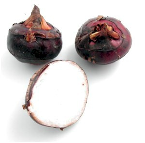 whole water chestnuts