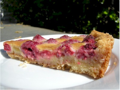 raspberry tart slice