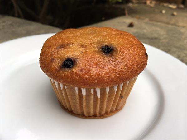 nutrisystem blueberry muffin