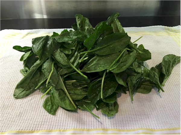 nutrisystem day 15 lunch fresh spinach