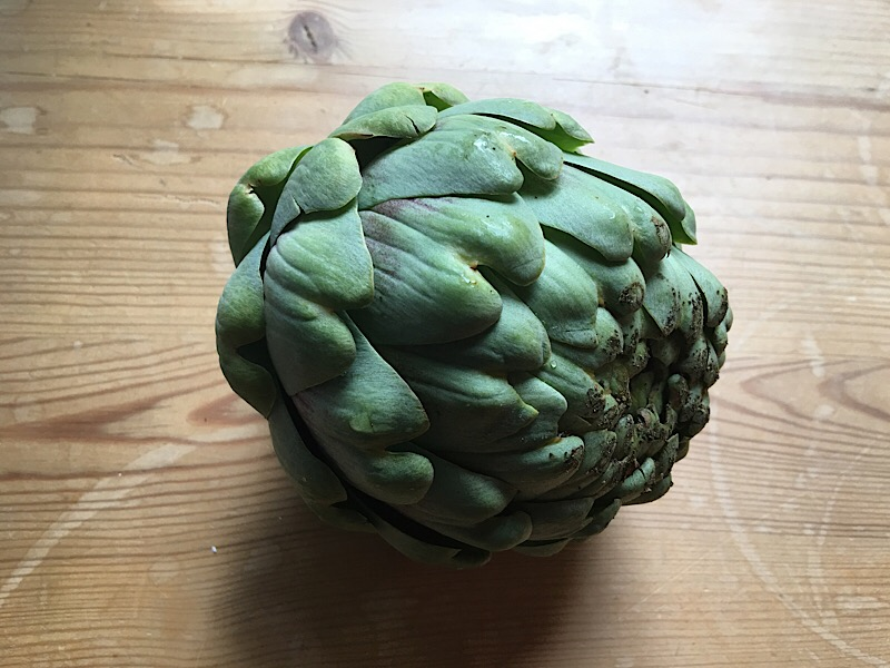 nutrisystem day 230 dinner artichoke
