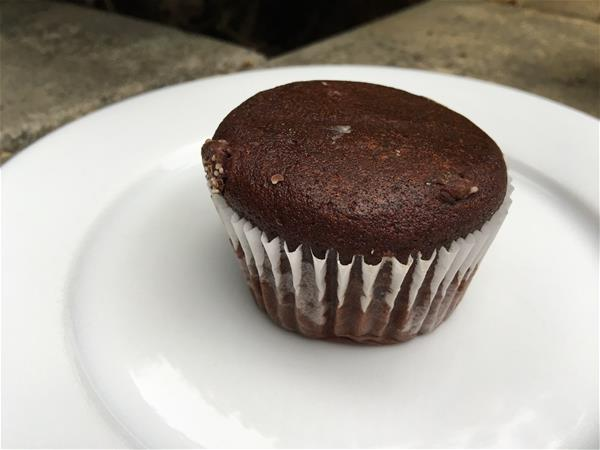 nutrisystem double chocolate muffin