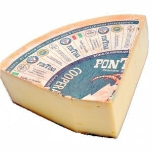 Fontina cheese : Substitutes, Ingredients, Equivalents