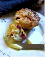 almond cranberry muffin
