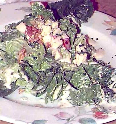 romain stilton salad