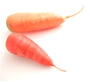 frenchcarrots_300.jpg