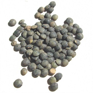 frenchgreenlentils.jpg