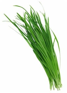 Garlic chives : Substitutes, Ingredients, Equivalents ...