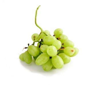 greengrapes_300.jpg
