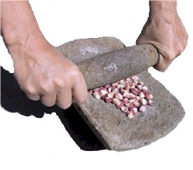 corn on a metate ready to grind