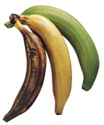 Image of Plantains Con Crema, Gourmet Sleuth